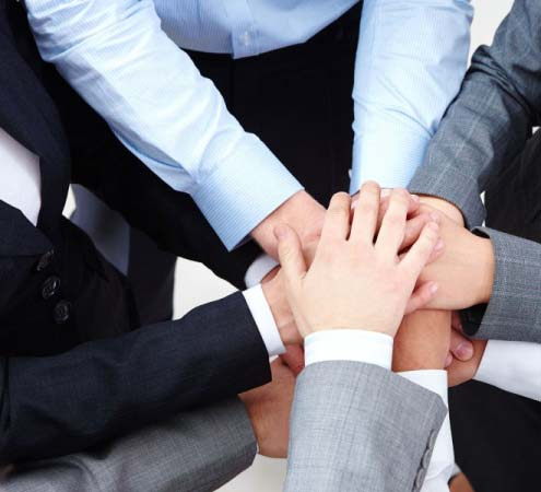 team-hands-web